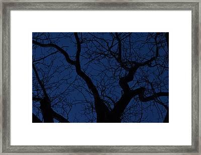Twilight Framed Print by JD Grimes