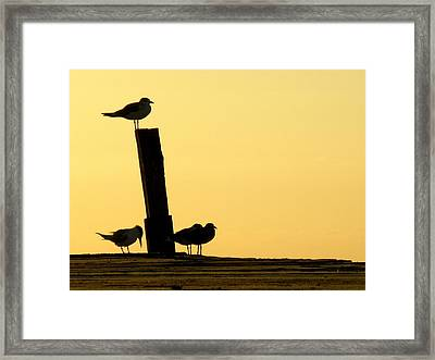 Twilight Silhouettes Framed Print by Artisan de l Image