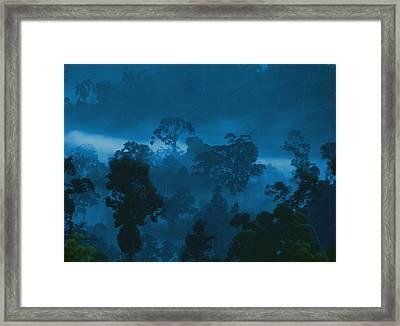 Twilight View Of Fog Rising Framed Print by Mattias Klum