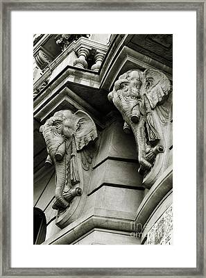 Twin Elephants Framed Print by Syed Aqueel