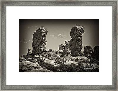 Twin Lions Framed Print
