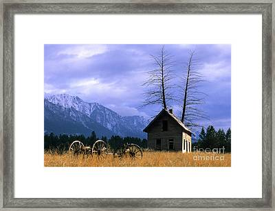 Twin Tree Cabin Framed Print by Bob Christopher