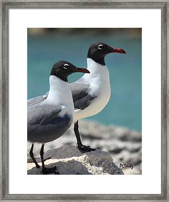 Framed Print featuring the photograph Twins by Patrick Witz
