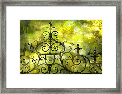 Twirling - Swirling  Framed Print by Richard Piper