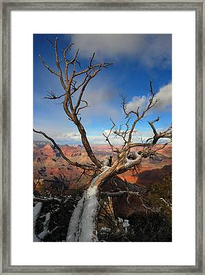Twist And Turns Framed Print