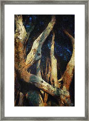 Twisted Framed Print by Gun Legler