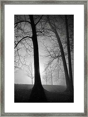Two And One... Framed Print
