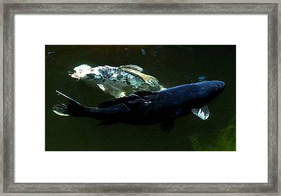 Two Blue Framed Print by Don Mann