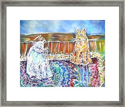 Two Cats On The Carpet Framed Print by M C Sturman