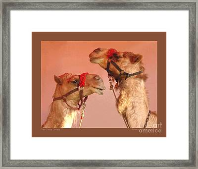 Two Circus Camels Framed Print by Patricia Overmoyer