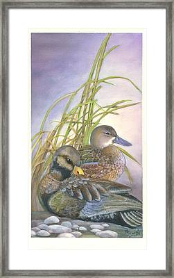 Two Ducks Framed Print