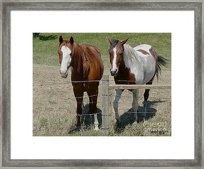Two Friends Framed Print by Bobbylee Farrier