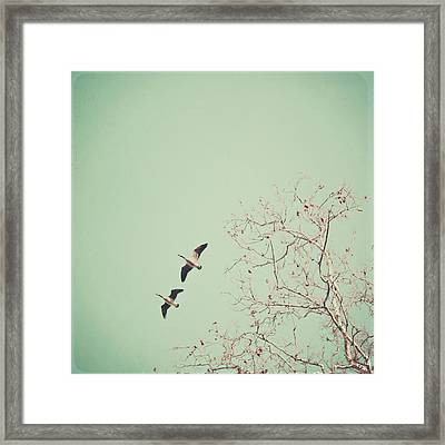 Two Geese Migrating Framed Print by Laura Ruth