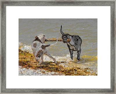 Two Good Friends Framed Print by David Lee Thompson