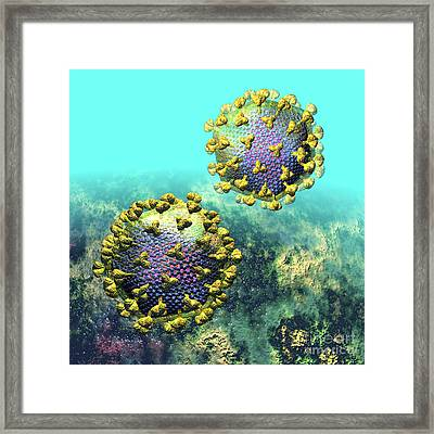 Two Hiv Particles On Light Blue Framed Print