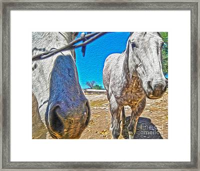 Two Horses Framed Print by Gregory Dyer