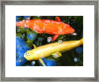 Two Koi Cruising Framed Print