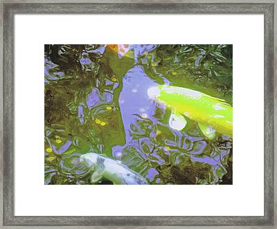 Two Koi In Water Garden Framed Print by Jerry Grissom