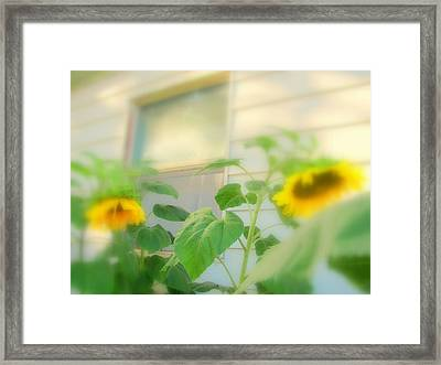 Two Leaning Over Framed Print by Amy Bradley