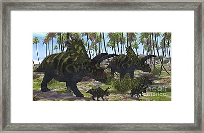 Two Mother Coahuilaceratops Escort Framed Print