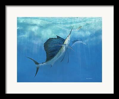 Pelegic Fish Framed Prints