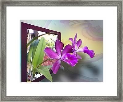 Framed Print featuring the digital art Two Orchids by Ginny Schmidt