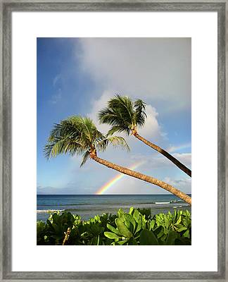 Two Palm Trees On Beach And Rainbow Over Sea Framed Print by Robert James DeCamp