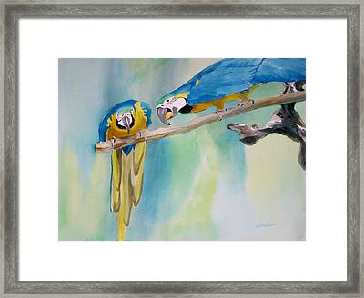 Framed Print featuring the painting Two Parrots by Richard Willows