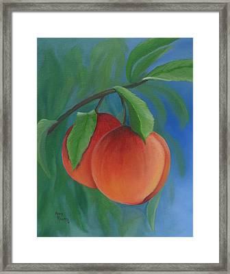 Two Peaches Framed Print by Mary Rogers