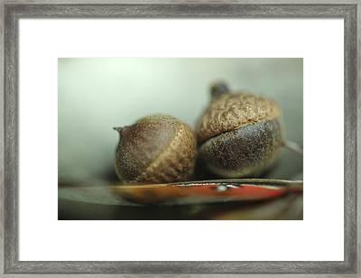 Two Peas Framed Print by Alicia Haselwood