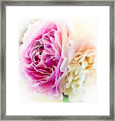 Framed Print featuring the photograph Two Peonies by Ronda Broatch