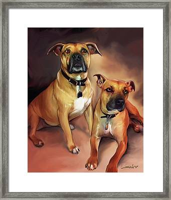 Two Pit Bull Terriers Framed Print
