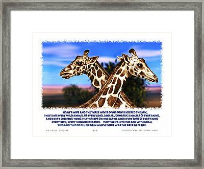 Two Plus Two Framed Print