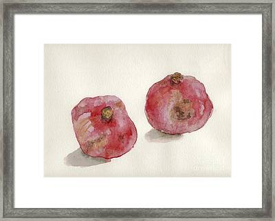 Two Pomegranates  Framed Print by Annemeet Hasidi- van der Leij