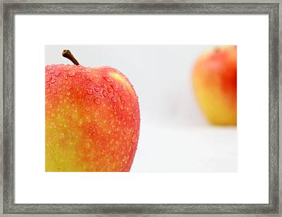 Two Red Gala Apples Framed Print by Paul Ge