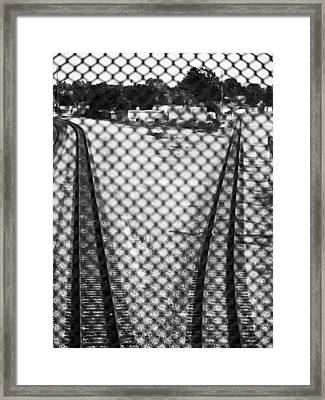 Two Roads Framed Print by D Wash