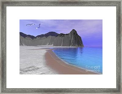 Two Seagulls Fly Over A Beautiful Ocean Framed Print