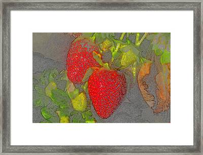 Two Strawberries Framed Print by David Lee Thompson