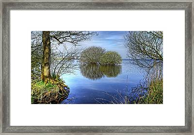 Two Watery Trees  Framed Print by Kim Shatwell-Irishphotographer