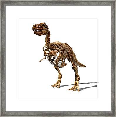 Tyrannosaurus Rex Dinosaur Framed Print by Friedrich Saurer