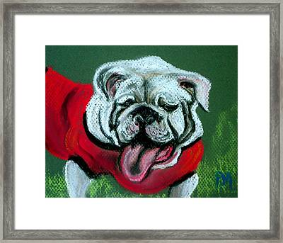 UGA Framed Print by Pete Maier