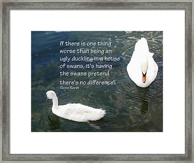 Ugly Duckling Framed Print by Ian  MacDonald