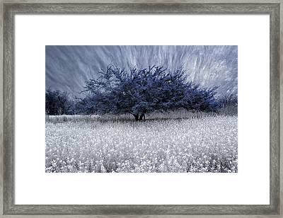 Unbelievable Framed Print