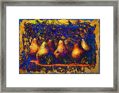 Unborn Pears Framed Print