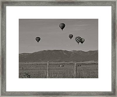 Framed Print featuring the photograph Unconcerned Lamas by Eric Tressler
