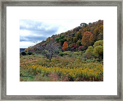 Framed Print featuring the photograph Under Dressed by Christian Mattison