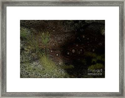 Under Sea Level Framed Print by Jan Willem Van Swigchem
