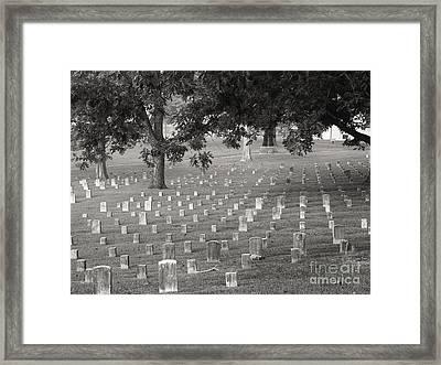 Under Shiloh Oaks Framed Print by David Bearden