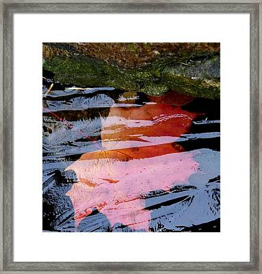 Under The Ice Framed Print