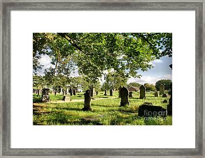 Under The Leaves Framed Print by Maria Tzamtzi